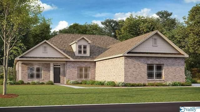 268 Northlake Drive, Meridianville, AL 35759 (MLS #1787219) :: MarMac Real Estate