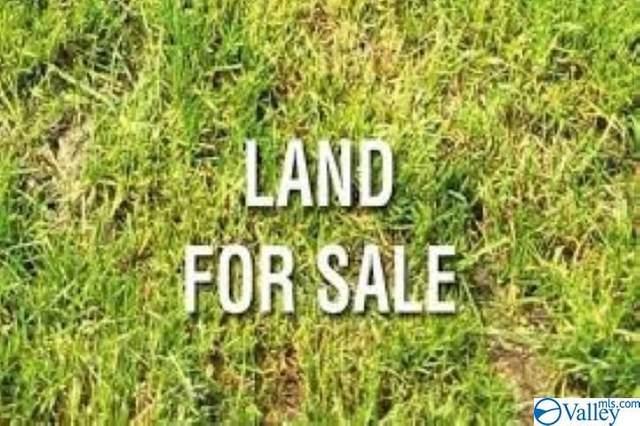 125 Lavaughn Drive, Albertville, AL 35950 (MLS #1787261) :: Amanda Howard Sotheby's International Realty