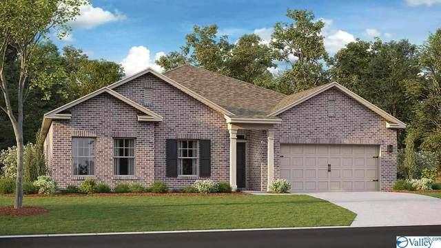 327 Jackson Point Circle, Huntsville, AL 35811 (MLS #1787362) :: MarMac Real Estate