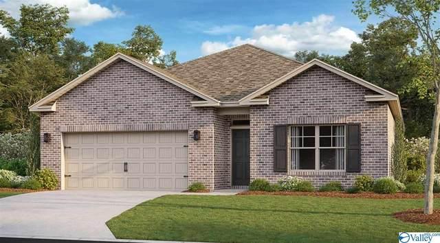 121 Red Fox Way, Meridianville, AL 35759 (MLS #1787369) :: MarMac Real Estate