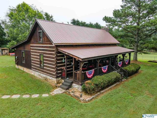 169 Bill Miller Drive, New Market, AL 35761 (MLS #1787450) :: Coldwell Banker of the Valley