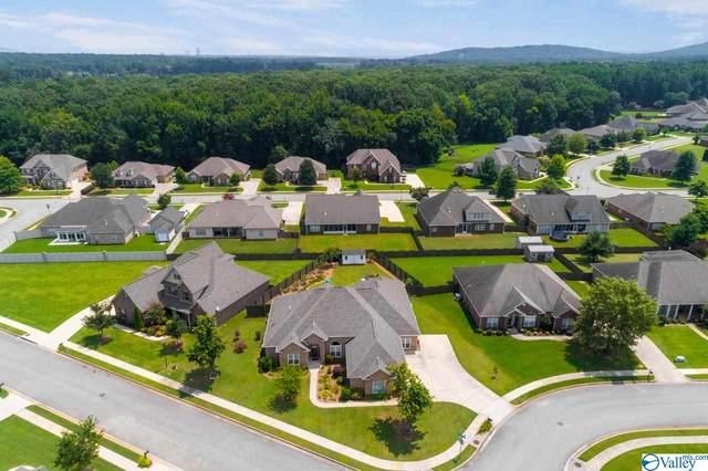 101 Mallard Cove Drive, Madison, AL 35756 (MLS #1787512) :: MarMac Real Estate