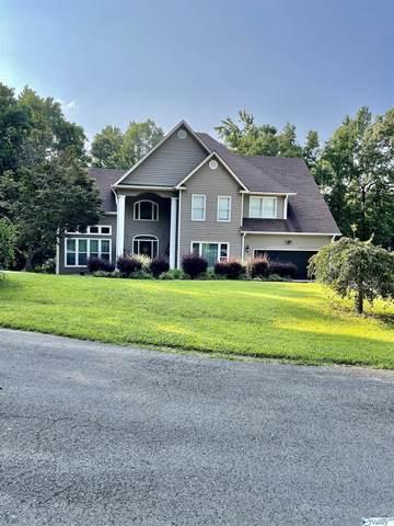 124 Bluff View Drive, Scottsboro, AL 35769 (MLS #1787722) :: Green Real Estate