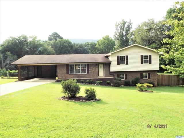 57 Sola Circle, Fort Payne, AL 35967 (MLS #1787732) :: MarMac Real Estate