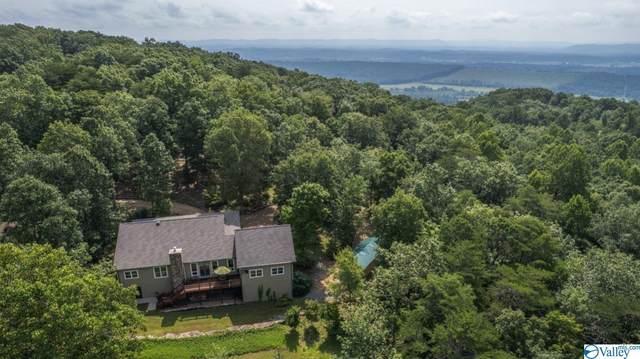 145 County Road 844, Mentone, AL 35984 (MLS #1788079) :: MarMac Real Estate