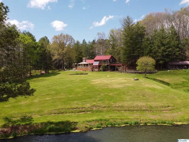 393 Jones Road, Pulaski, TN 38478 (MLS #1788294) :: Green Real Estate