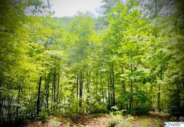 0 Paradise Trail, Arley, AL 35541 (MLS #1788514) :: Southern Shade Realty
