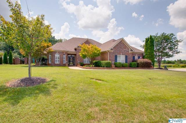 227 Waterbrook Lane, Harvest, AL 35749 (MLS #1788544) :: MarMac Real Estate