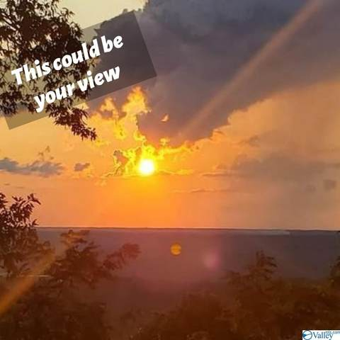 1400 Mountain Brow Road, Ft Payne, AL 35967 (MLS #1788709) :: Green Real Estate