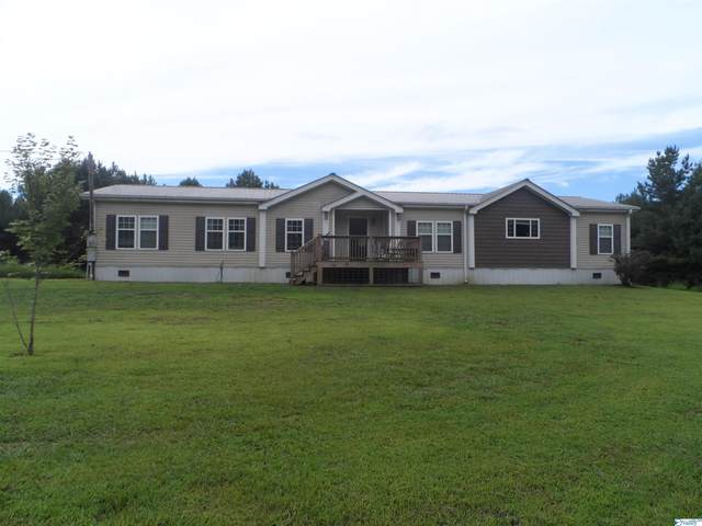 565 County Road 1575, Baileyton, AL 35019 (MLS #1788863) :: Coldwell Banker of the Valley