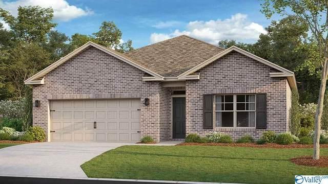 316 Jackson Point Circle, Huntsville, AL 35811 (MLS #1789014) :: MarMac Real Estate