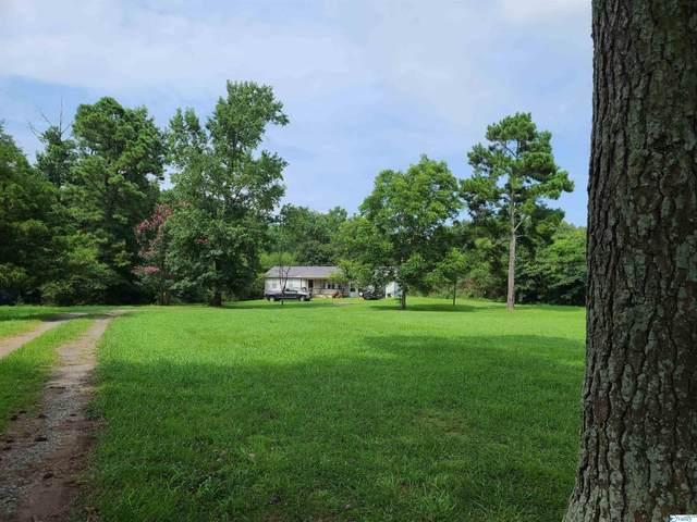3793 County Road 601, Hanceville, AL 35077 (MLS #1789183) :: Legend Realty