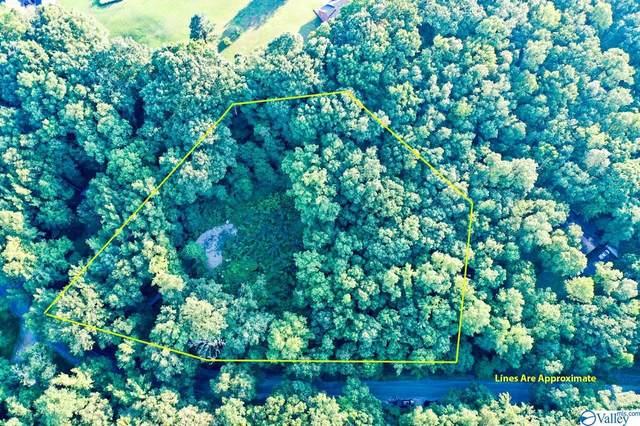 650 County Road 379, Trinity, AL 35673 (MLS #1789382) :: MarMac Real Estate