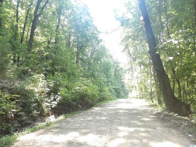 0 Shin Point Road, New Hope, AL 35760 (MLS #1789622) :: RE/MAX Distinctive | Lowrey Team