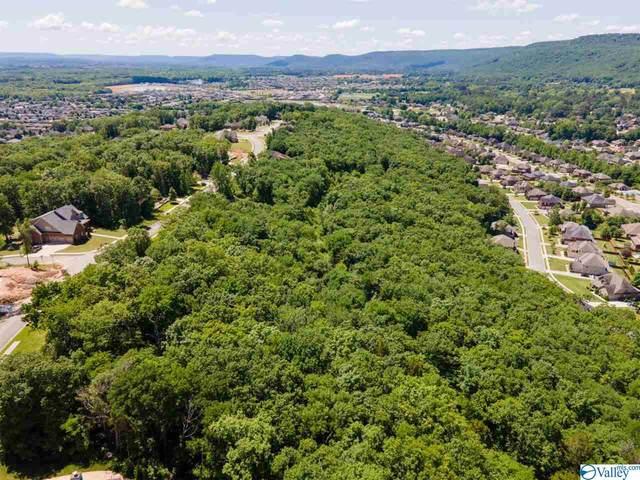 4641 Saddle Ridge Drive, Owens Cross Roads, AL 35763 (MLS #1789721) :: RE/MAX Unlimited