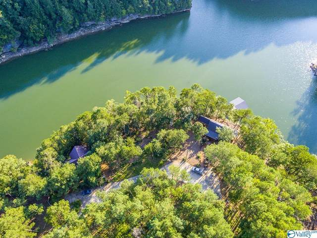 Lot 8/8A Wilson Circle, Double Springs, AL 35553 (MLS #1789793) :: RE/MAX Unlimited