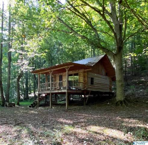 781 County Road 283, Collinsville, AL 35961 (MLS #1789842) :: Coldwell Banker of the Valley