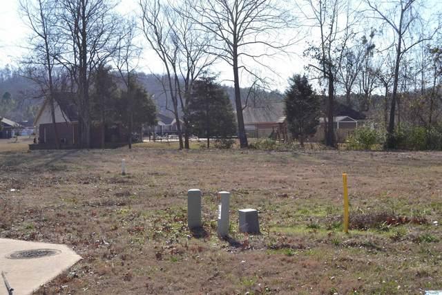 365 Amber Way, Decatur, AL 35603 (MLS #1790052) :: MarMac Real Estate