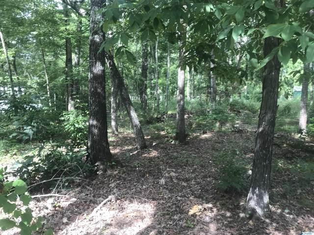 0 Hidden Point Drive, Cedar Bluff, AL 35959 (MLS #1790066) :: Green Real Estate