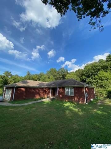 17 Farm Supply Road, Union Grove, AL 35175 (MLS #1790236) :: Green Real Estate