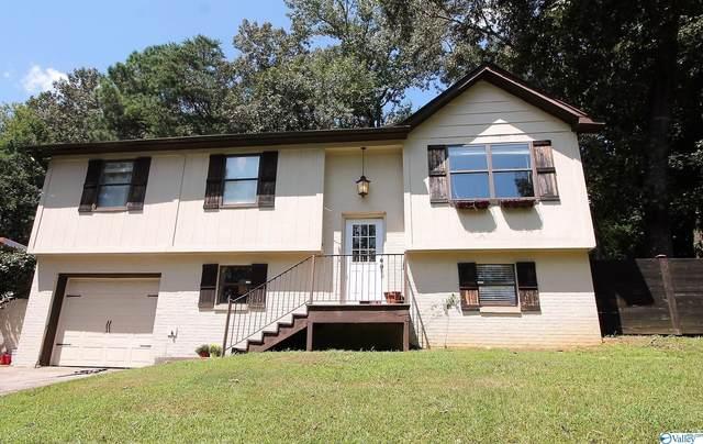 95 Academy Street, Springville, AL 35146 (MLS #1790259) :: MarMac Real Estate