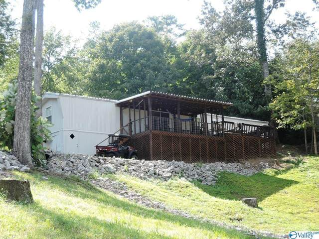 1361 County Road 3099, Double Springs, AL 35553 (MLS #1790273) :: Coldwell Banker of the Valley