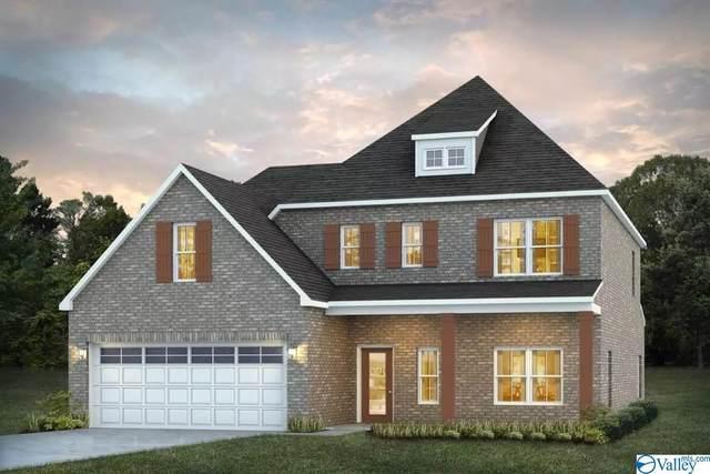 368 Lionel Allen Way, Madison, AL 35757 (MLS #1790293) :: Green Real Estate