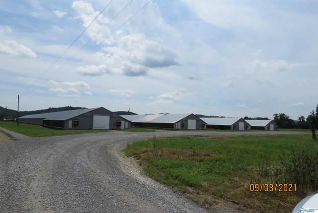 3014 County Highway 25, Guntersville, AL 35976 (MLS #1790353) :: MarMac Real Estate