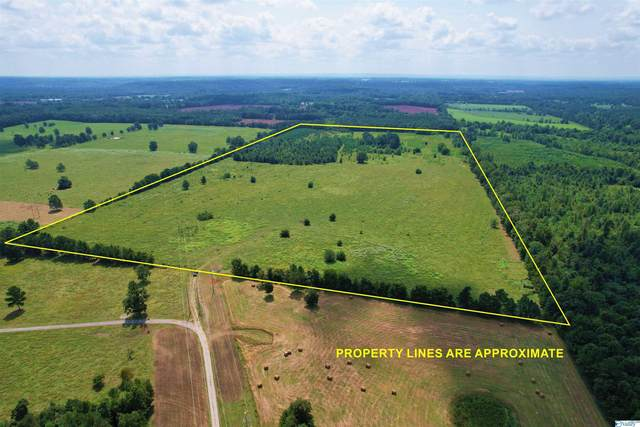 00 County Road 585, Town Creek, AL 35672 (MLS #1790512) :: Coldwell Banker of the Valley