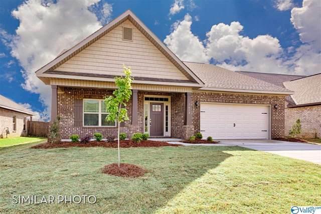 241 Portrait Street, Meridianville, AL 35759 (MLS #1790730) :: MarMac Real Estate