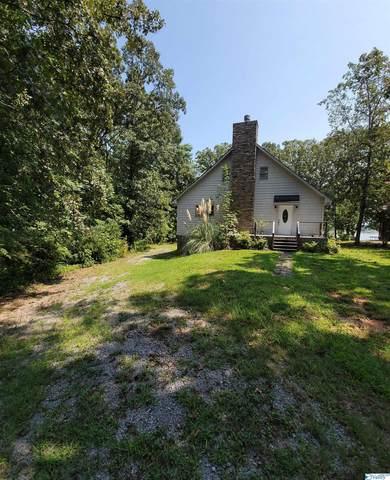 455 County Road 625, Cedar Bluff, AL 35959 (MLS #1790779) :: Rebecca Lowrey Group