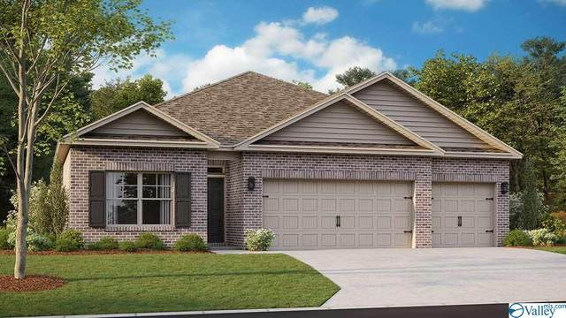 310 Jackson Point Circle, Huntsville, AL 35811 (MLS #1790934) :: MarMac Real Estate