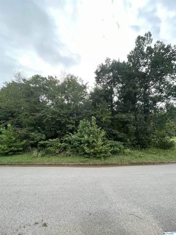 255 Wedgewood Terrace Road, Harvest, AL 35749 (MLS #1791028) :: Legend Realty