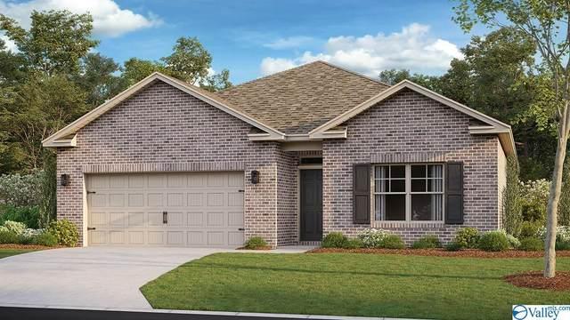 106 Donovan Drive, Madison, AL 35756 (MLS #1791071) :: Southern Shade Realty