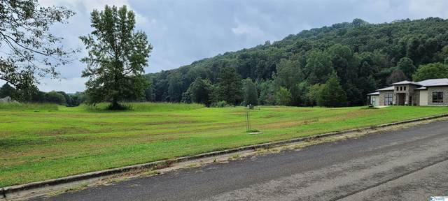 36 Lake Creek Drive, Guntersville, AL 35976 (MLS #1791147) :: Coldwell Banker of the Valley