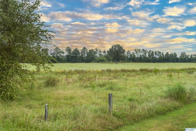 4101 Old Hwy 431, New Hope, AL 35760 (MLS #1791161) :: RE/MAX Unlimited