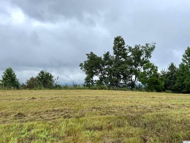 LOT 202 County Road 767, Cedar Bluff, AL 35959 (MLS #1791177) :: MarMac Real Estate