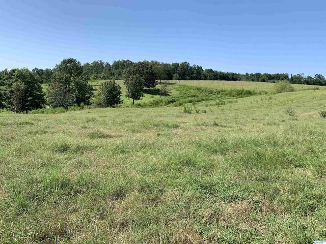 4586a County Road 66, Section, AL 35771 (MLS #1791201) :: LocAL Realty