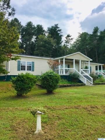 350 County Road 33, Piedmont, AL 36272 (MLS #1791221) :: LocAL Realty