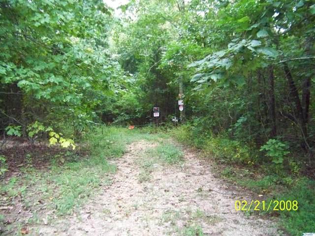 000 Bella Vista Drive, Scottsboro, AL 35768 (MLS #1791367) :: MarMac Real Estate