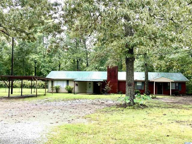 160 Lakefront Drive, Leesburg, AL 35983 (MLS #1791399) :: MarMac Real Estate
