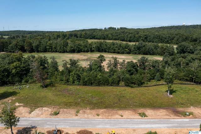 0 Clubhouse Lane Prc-5, Rising Fawn, GA 30738 (MLS #1791453) :: Green Real Estate
