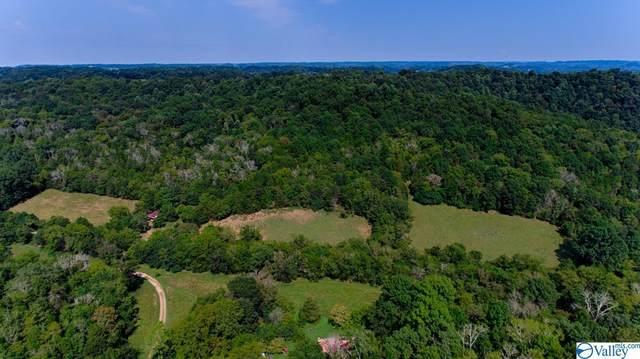 000 Young Hollow Road, Pulaski, TN 38478 (MLS #1791470) :: Green Real Estate