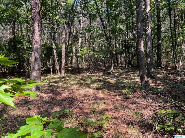 0 Old Rocky Trail I-3, Rising Fawn, GA 30738 (MLS #1791517) :: Green Real Estate