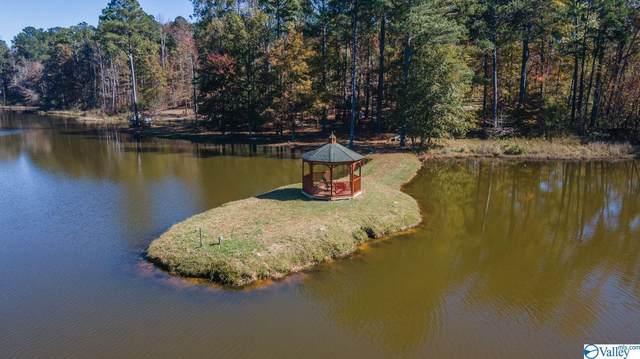 Lot 35 County Road 103, Mentone, AL 35984 (MLS #1791713) :: MarMac Real Estate