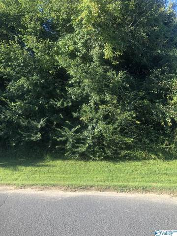 Lot 4 Stoney Brook Drive, Union Grove, AL 35175 (MLS #1791761) :: MarMac Real Estate