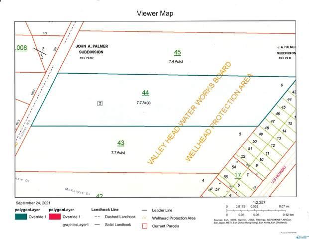 102 County Road N Palmer Road, Valley Head, AL 35989 (MLS #1791806) :: Green Real Estate