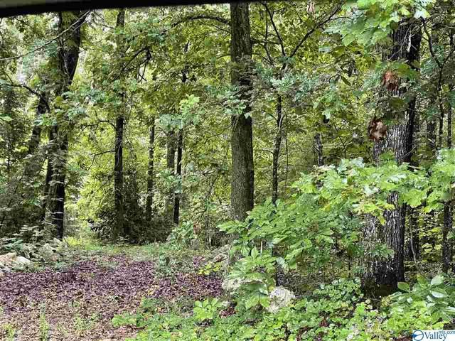 20-21 County Road 592, Leesburg, AL 35983 (MLS #1792491) :: MarMac Real Estate