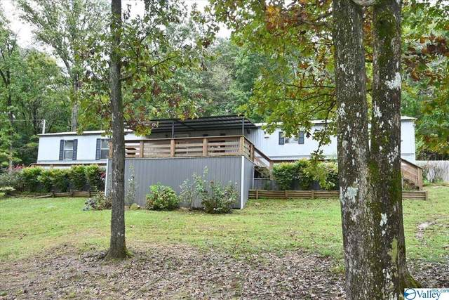3273 County Road 1435, Vinemont, AL 35179 (MLS #1792573) :: LocAL Realty
