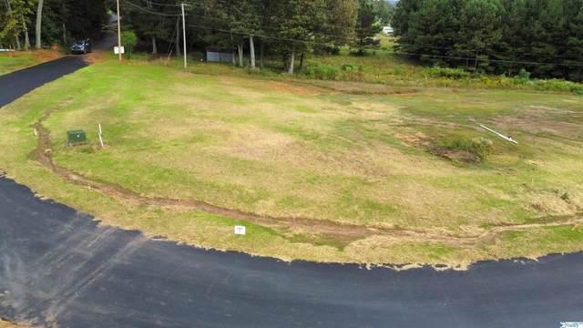 15 Brocato Way, Guntersville, AL 35976 (MLS #1792672) :: MarMac Real Estate
